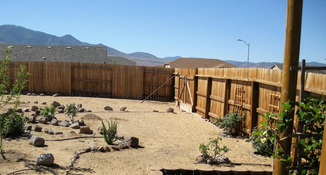 The Garden 2011