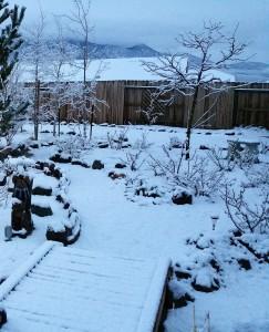 Winter Scene (10.22.18)